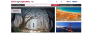 Os 10 melhores sites de banco de imagens gratuitos | Agência 904